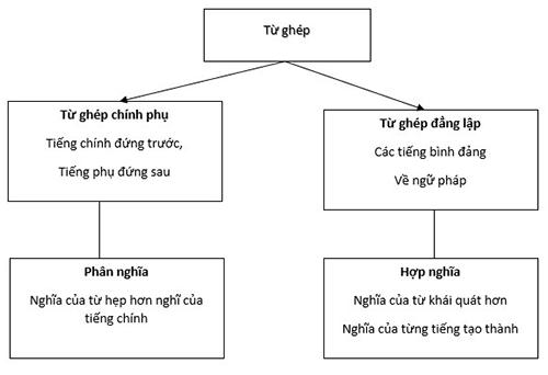 Từ ghép là gì? 3 cách phân biệt từ ghép, từ láy nhanh và dễ hiểu nhất 5