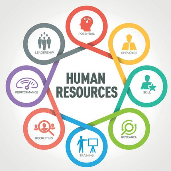 HR là gì? Tổng hợp chi tiết các điều cần biết về ngành HR 7